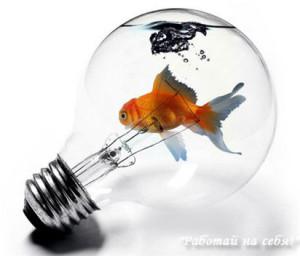 бизнес на изготовление аквариумов